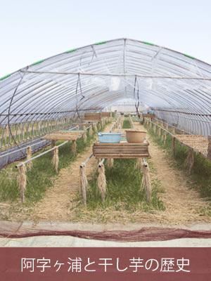 阿字ヶ浦と干し芋の歴史